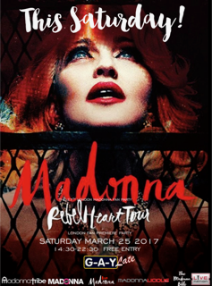 Madonnafanparty_uk